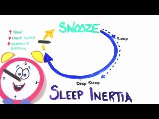 Занятное видео о будильнике